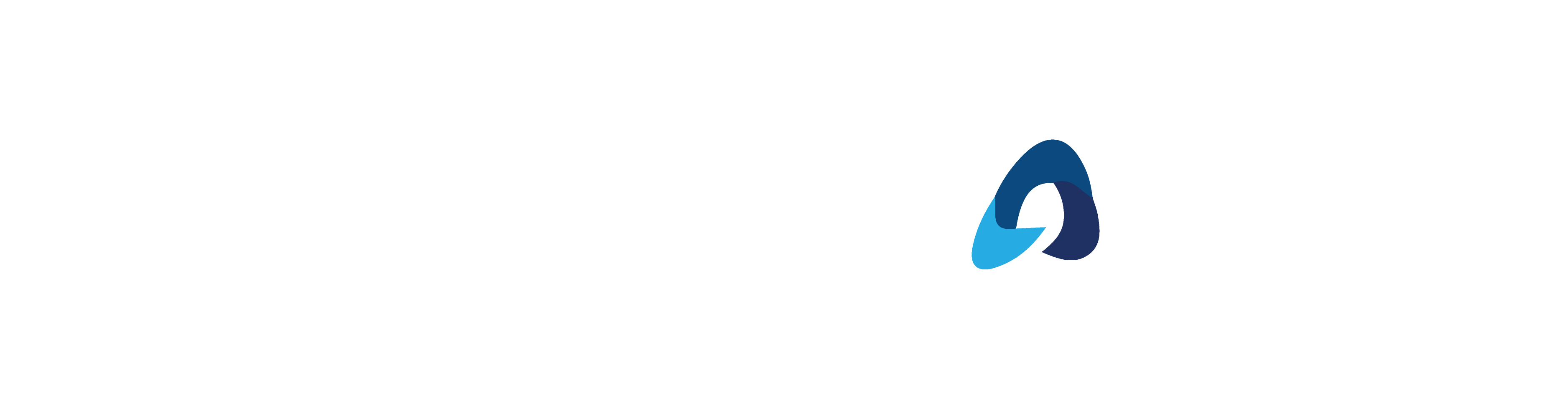 bluestone-logo-color-01