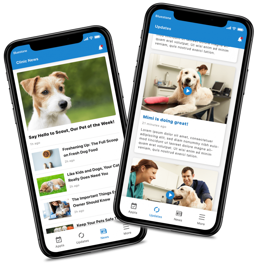 veterinarian-app-clinic-news-and-pet-updates-app-screens-1