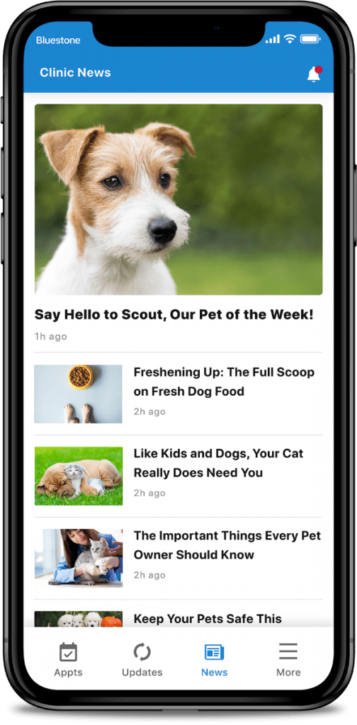 veterinarian-app-clinic-news-app-screen